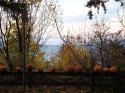 pumpkin-graveyard1